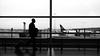 going back home - 1010299-01-01 (mario aquaro) Tags: goingbackhome travel journey lumixgx8 commuting