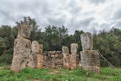 Son Corró II (Fortimbras) Tags: talayotico santuario tokinaaf1224mmf4