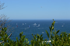 """""""Sydney to Hobart yacht race 2016"""" (Boxing Day) competing yachts passing """"The Gap"""" in open ocean (nicephotog) Tags: sydney hobart yacht race 2016 flotilla boat competitors sail ocean sea spinnaker waves froth helicopter"""