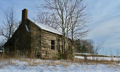 Snowy day, ca1840 (ariel is . . .) Tags: oldwoodenhouse brickchimney southcentralva virginia winter twospookywindowsoneiscoveredwithtin 1840 early19thcentury empty abandoned ruraldecay tinroof thosemayormaynotbeloadbearingvines illneverunderstand