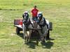Howell Farm Plowing Match 205 (Adam Cooperstein) Tags: howelllivinghistoryfarm mercercountyparkcommission mercercounty newjersey mercercountynewjersey lambertville lambertvillenewjersey