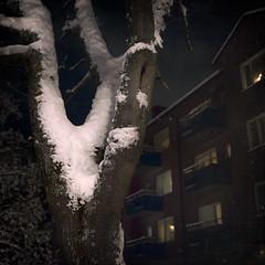 Homebound (Samuel Poromaa) Tags: urban night winter squarephotography samuelporomaa poromaa