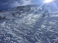 IMG_5223 (Dan_lazar) Tags: יום סקי שלג צפון חרמון גולן ישראל לבן ski hermon mountain israel