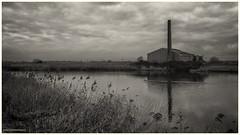 Strijen (Rens Timmermans) Tags: canon5dmk3 tamronsp2470mmf28 landschap water industrie niksilverefexpro hoekschewaard holland