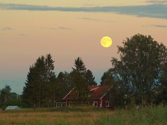 Fullmoon, Countryside Linköping Sweden 19 Jul-2016 (DSC11207afl) (Johan Kleventoft) Tags: fullmoon moonrise moon landscape countryside sättuna linköping östergötland sweden sky moonshot moonlight månen houses johankleventoft trees tree green