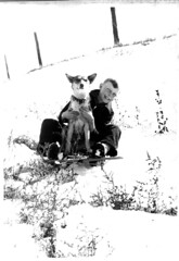 Gary & Buddy on Sled (gem66) Tags: bw oldphoto black white dog boy snow sled mystory buddy gary childhood colorado favorites pets oldfamilyphotos old story animal blackwhite blackandwhite vintage