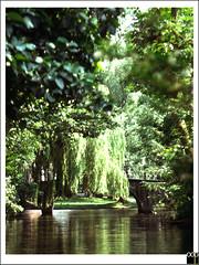 B/Brugge (oopsfotos.nl) Tags: old bridge trees summer sun green canal belgium brugge shade oop
