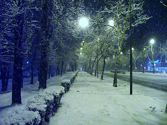 ns1994 (Zoran Skaljac) Tags: novisad winter snow night zoran skaljac city kaljac futokiput srbija serbia europe
