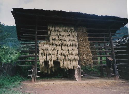 haystack2