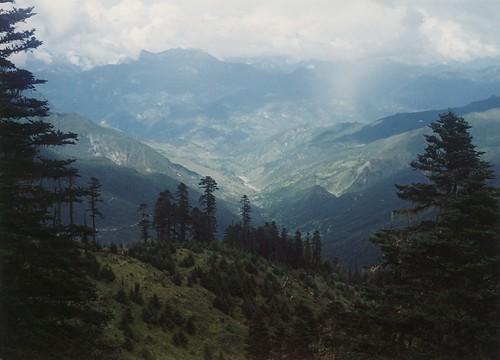 muli view2