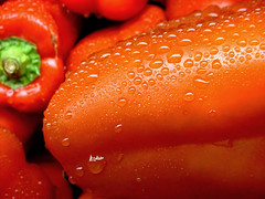 Red Pepper (Dave Ward Photography) Tags: 2005 red food plants wet water vegetables droplets drops unfound raindrops peppers produce waterdrops davewardsmaragd pss:opd=1109597354