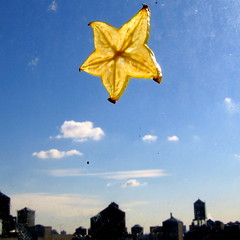 the only starfruit in the sky (niznoz) Tags: sky food newyork fruit watertower s1 starfruit