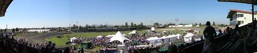 Whitten Oval, Footscray. Panorama.