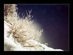 Gosau 3 (Walter Quirtmair) Tags: 2005 winter mountain lake snow cold film austria favme 4winter swq takenbywalter eos300 gosau
