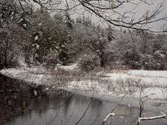river (MartinRottler) Tags: boston beantown