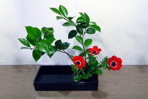 Ikebana - Moribana slanting