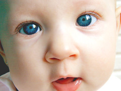 Nicole (dulcelife) Tags: blue eyes blueeyes beauty beautiful baby child infant dulcelife olympus olympusd490 topv111 creamofthecropmostviewed puertorican boricua wow
