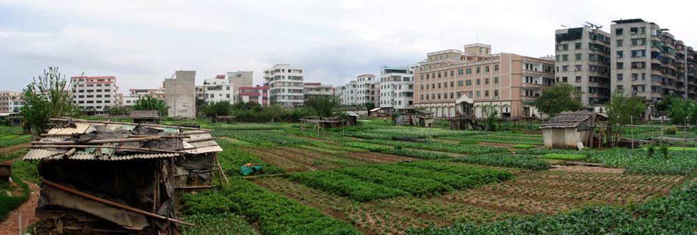Landgrab city farm in urban square in shenzhen china