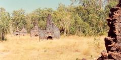 Port Essington ruins