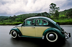 on the road ( Tatiana Cardeal) Tags: road travel brazil car brasil vintage wow magazine travels published revista documentary award tatianacardeal brsil fusca anos50 documentaire flickys excellenceinphotographysouthamerica paranstate 3leicaagfacontest2005 documentario fotografemelhor