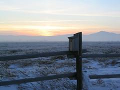Sunset Birdhouse (MaureenShaughnessy) Tags: winter sunset lake cold ice water frozen twilight montana seasons calendar pics elements helena brrrr gabes wintercolors coldseason seasonalrhythmswinter