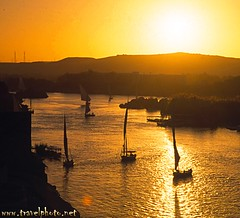 Feluccas on the Nile (Aswan, Egypt)