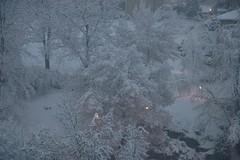 lights in the snow (Dreamer7112) Tags: snow 20d schweiz switzerland europe suisse canon20d zurich canoneos20d snowing zrich svizzera winterwonderland eos20d zurigo limmatwest latemarchsnow
