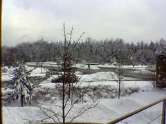 Blick aus dem Fenster (Steffen Roller) Tags: nokia technopark
