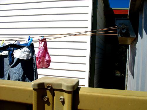 panties laundry clothesline echuca