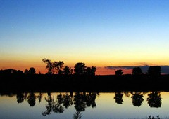 Amazing Sunset (Nicki817) Tags: trees summer love nature colors reflections outdoors tag2 tag1 mother sunsets 1on1 continuum lptdp