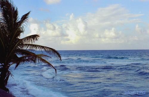 sea sky cloud beach jamaica 1992