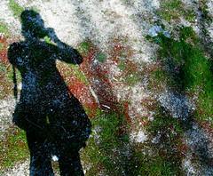 lovely surprise/bonita sorpresa (rayo de sol) Tags: selfportrait me lafotodelasemana rayodesol analiza3539 analiza7 lfscontraluces