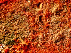 Brick Texture (oliviermela) Tags: red color colour brick texture textura closeup digital construction background sony grain cybershot rough noise roughness