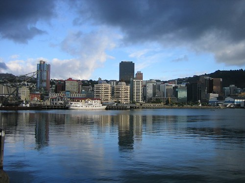 Morning Wellington