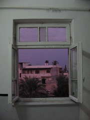jericho window (weef kichards) Tags: tree green window colors evening twilight view purple dusk pastel palestine mint like palm jericho shimmering nightfall