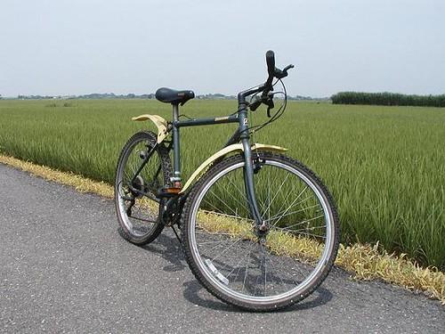 My bike on the road in the green fields of rice. Jitensha.