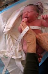 her birth (brooklyn) Tags: baby girl hands birth niece newborn measure midwife abigayle photodotocontest1