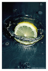 lemondrop (hd connelly) Tags: food motion water hdconnelly lemondrop thingsthatgosplash waterform