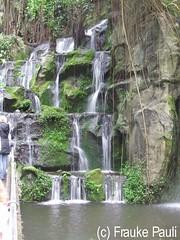44 linker Teil des Wasserfalls (CatsFrauPau) Tags: zoo wasserfall burgerszoo arnheim