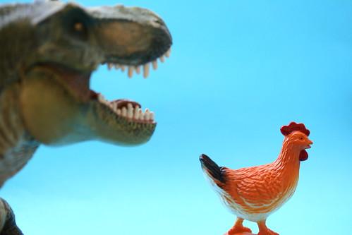 Pollo y un dinosaurio