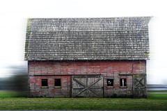 Drive By Barn (Living Juicy) Tags: building architecture barn altered driveby livingjuicy lj2006
