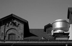industrial roofscape with pigeon (L_) Tags: windows roof blackandwhite bw toronto ontario canada brick architecture industrial pigeon steel distillery