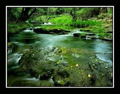 Río Huesna II