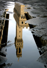 Torre en charco (Edgar a secas) Tags: italy reflection florence agua reflejo florencia charco