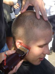 i91744383_28112 (haircutsz) Tags: boy haircut man buzz cut crew forced clipper butch induction nape