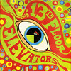 13th floor elevators | the psychedelic sounds of the 13th floor elevators