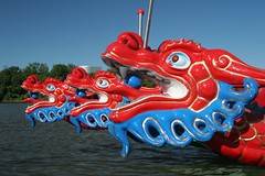 Dragons at the Ready (Aaron Webb) Tags: dc dragon rowing dragonboat dragonboatfestival