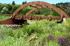 Wood Arch Bridge, Lyons, Colorado (Thad Roan - Bridgepix) Tags: wood bridge flowers foothills mountains water river photo colorado stream arch bridges arches boulder wildflowers estespark span rockymountainnationalpark lyons bridging applevalley 200005 glulam bridgepixing bridgepix stvrainriver saintvrainriver applevalleybridge