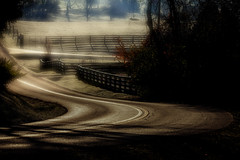 Kentucky Country Road (Klaus Ficker --Landscape and Nature Photographer--) Tags: countryroad kentucky fog fogy rain cold morning morninglight usa kentuckyphotography klausficker canon eos5dmarkii