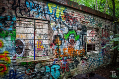 Lost Places | Naturpark Schneberger Sdgelnde (Tom Radziwill - Fotografie) Tags: house berlin nature wall wand ruin graffity ruine grafitty vergessen lostplaces canoneos500d naturparkschneberg